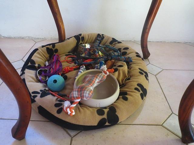 Hundespielzeug im Hundekorb von Miss Lomax, flipper-privat.de