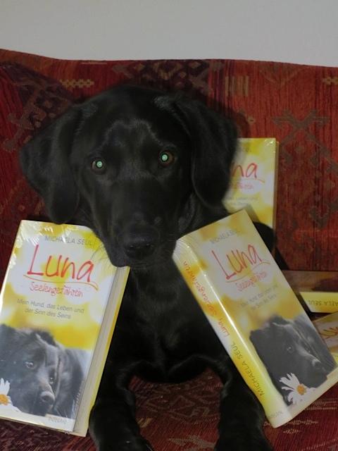Der Labrador Miss Lomax der Autorin Michaela Seul umgeben von dem Buch seiner Vorgängerin Luna, flipper-privat.de