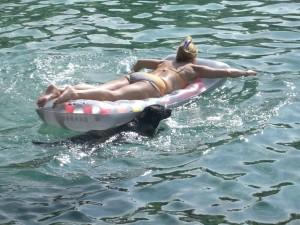Hund und Luftmatratze, Die Autorin Michaela Seul und ihre Hündin Luna,  flipper-privat.de