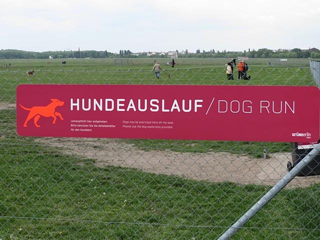Hunde auf dem Tempelhofer Feld in Berlin, flipper-privat.de