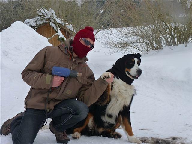 Hund im Schnee, Berner Sennenhund mit Mütze und Maske, Moll ist ein Freund von Luna, flipper-privat.de