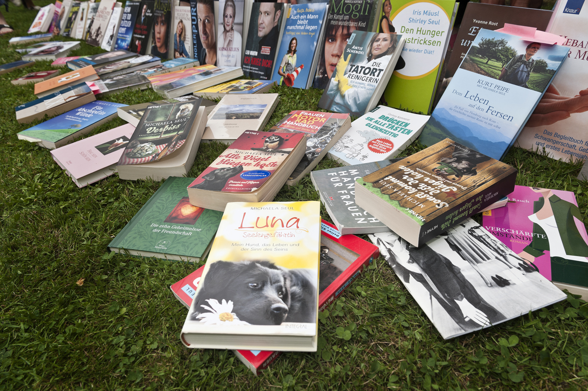 Einige der veröffentlichten Bücher der Schriftstellerin Shirley Michaela Seul auf einen Blick