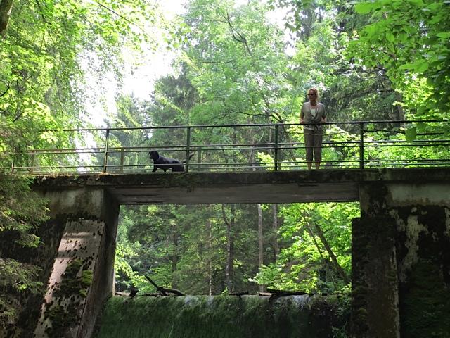 Die Schriftstellerin Michaela Seul und ihre Hündin Miss Lomax stehen auf einer Brücke und machen sich Gedanken über ihren Hundeblog, den es unter www.flipper-privat im Netz zu finden gibt
