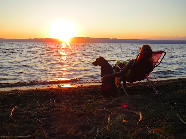Am Bolsenasee in Umbrien sitzen die Schriftstellerin Michaela Seul und ihr Hund, der schwarze Labrador Miss Lomax und schauen über das Wasser, während sie sich neue Blogeinträge für www.flipper-privat.de ausdenken