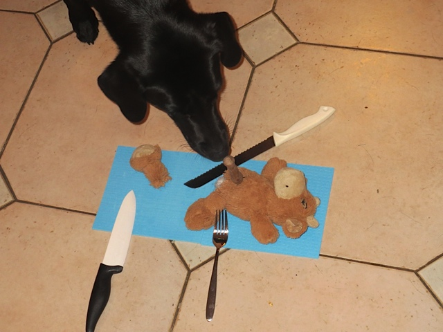 Miss Lomax schlachtet schon mal ein Stofftier, nicht umsonst ist sie die Muse der Krimiautorin Michaela Seul, deren vierbeiniger Held Flipper heißt, mehr gibt es unter www.flipper-privat.de