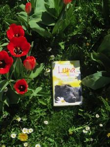 Luna Seelengefährtin ist ein Buch der Autorin Michaela Seul, mehr Infos unter www.flipper-privat.de