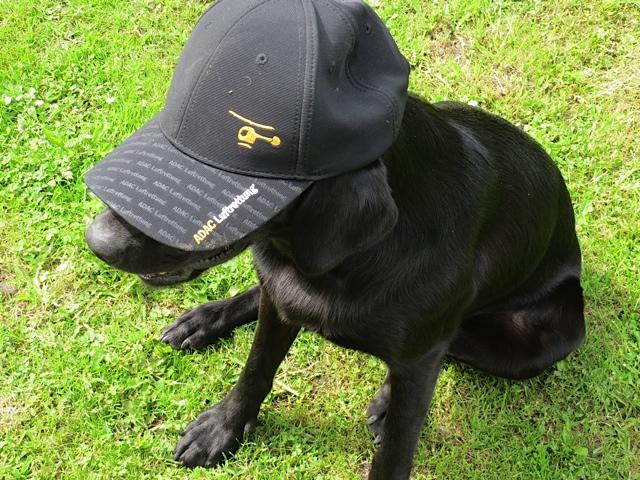 Nebenjob für Labrador: ADAC Luftrettung. Mehr im Blog bei www.flipper-privat.de, wo die Muse abhebt