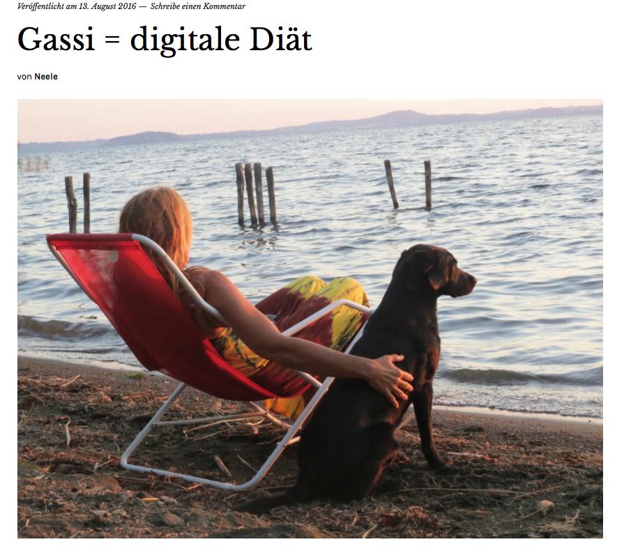 Ein Gastbeitrag auf Hundeblog von www.flipper-privat.de