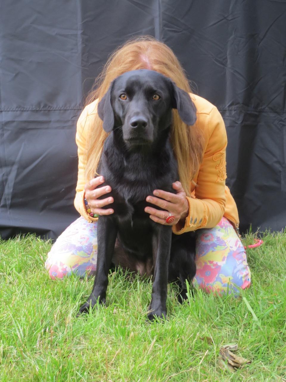 Ein Hund ist ein Herz auf vier Beinen auch auf www.flipper-privat.de