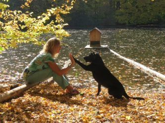 Herbstbild mit Hund auf https://shirley-michaela-seul.de